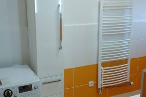 Rekonstrukce koupelny - Dolní Bukovsko